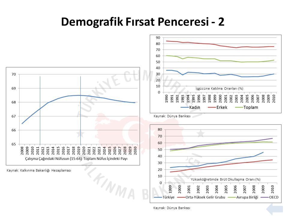 Demografik Fırsat Penceresi - 2