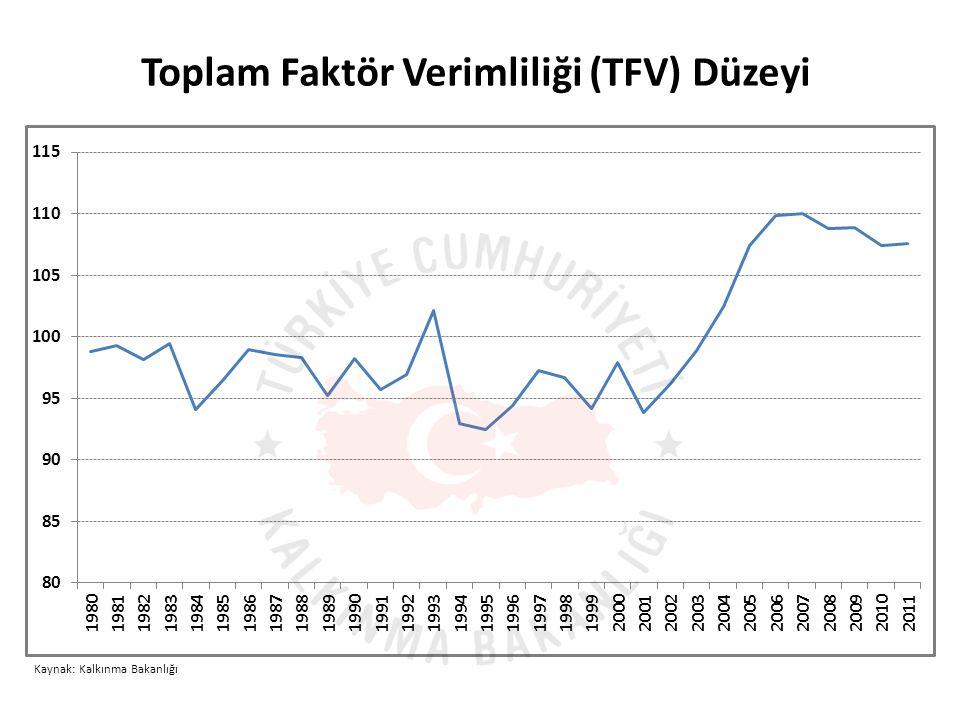 Toplam Faktör Verimliliği (TFV) Düzeyi