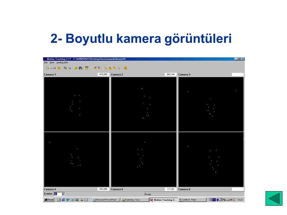 2- Boyutlu kamera görüntüleri