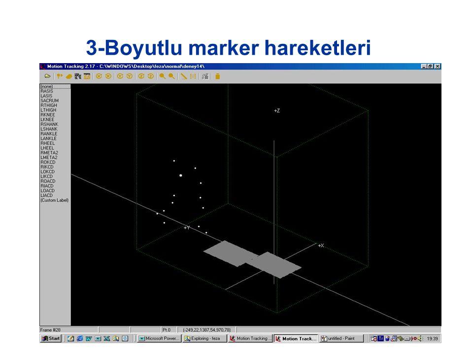 3-Boyutlu marker hareketleri