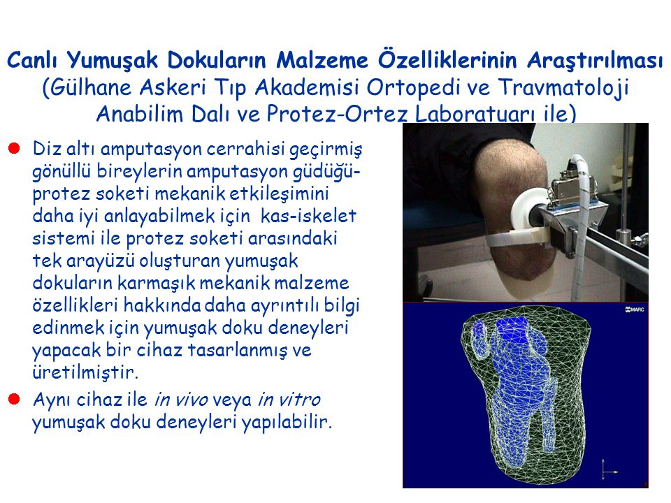 Canlı Yumuşak Dokuların Malzeme Özelliklerinin Araştırılması (Gülhane Askeri Tıp Akademisi Ortopedi ve Travmatoloji Anabilim Dalı ve Protez-Ortez Laboratuarı ile)