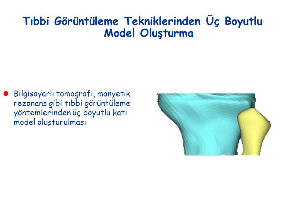 Tıbbi Görüntüleme Tekniklerinden Üç Boyutlu Model Oluşturma