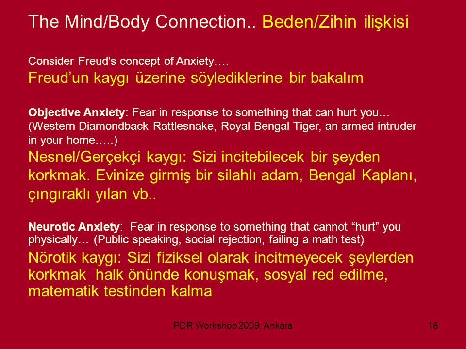 The Mind/Body Connection.. Beden/Zihin ilişkisi