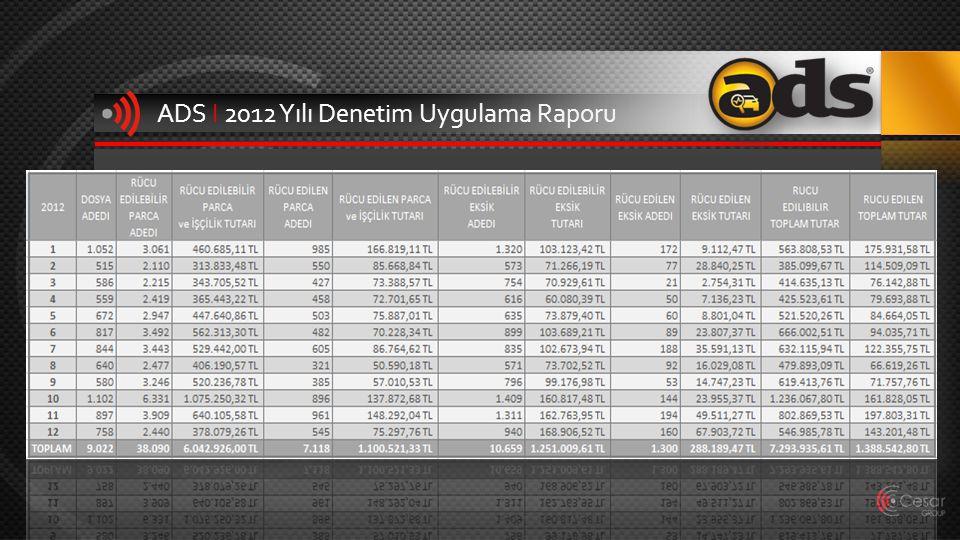 ADS I 2012 Yılı Denetim Uygulama Raporu