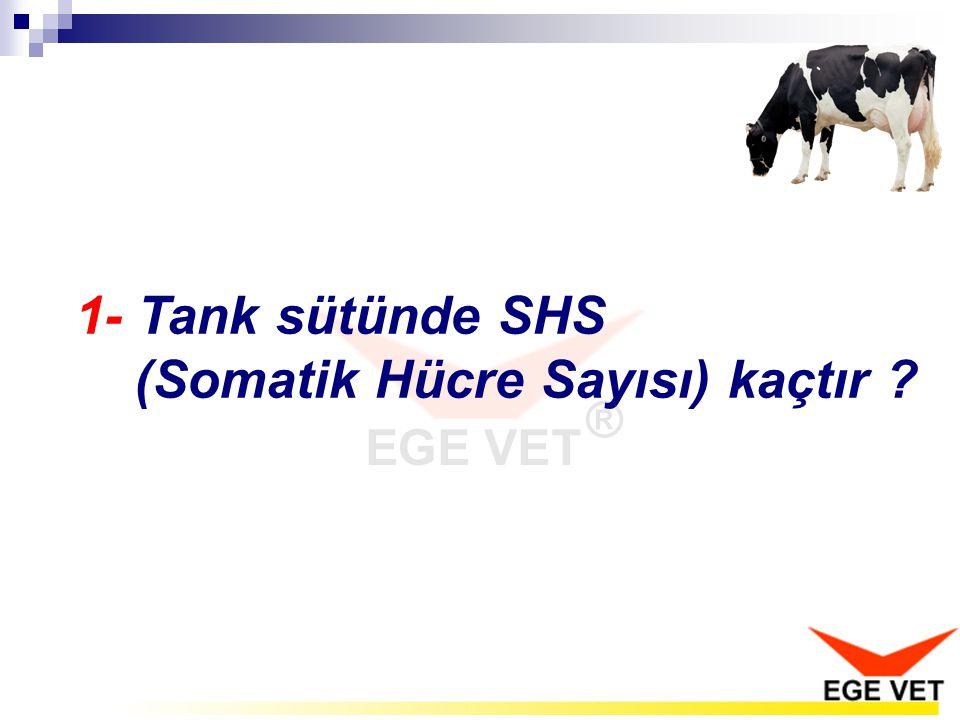 1- Tank sütünde SHS (Somatik Hücre Sayısı) kaçtır