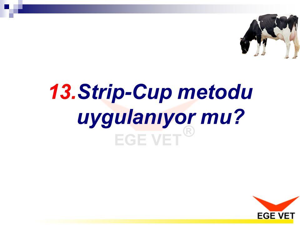 13.Strip-Cup metodu uygulanıyor mu