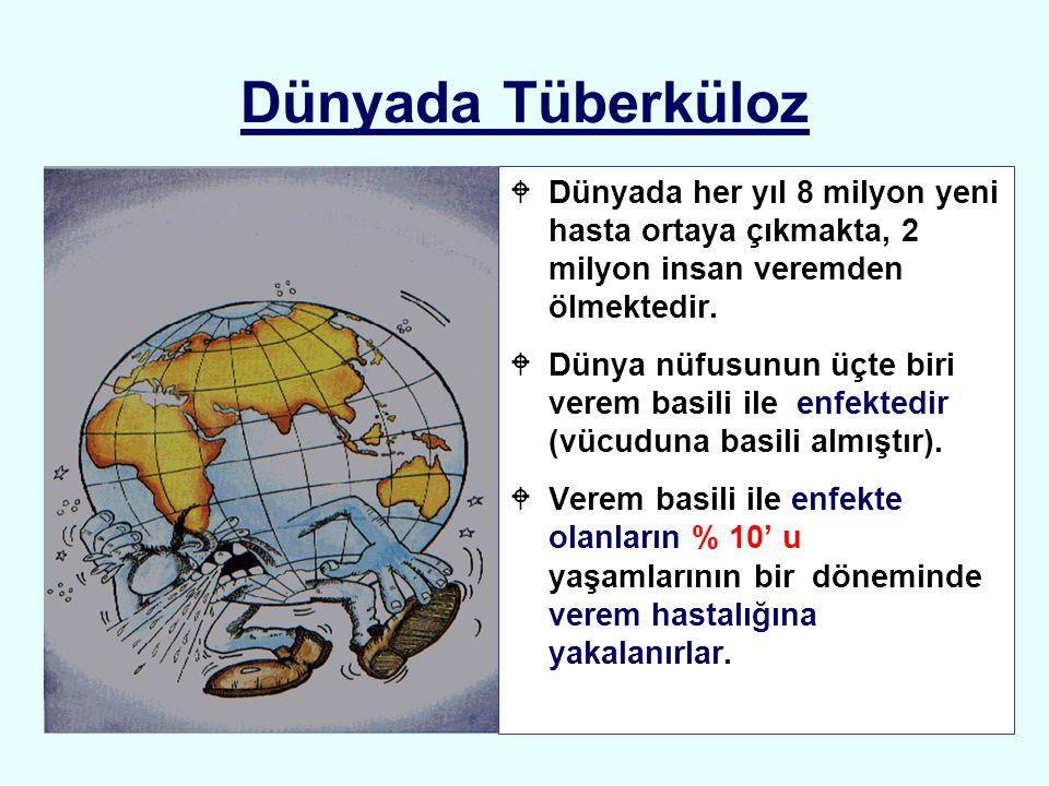Dünyada Tüberküloz Dünyada her yıl 8 milyon yeni hasta ortaya çıkmakta, 2 milyon insan veremden ölmektedir.