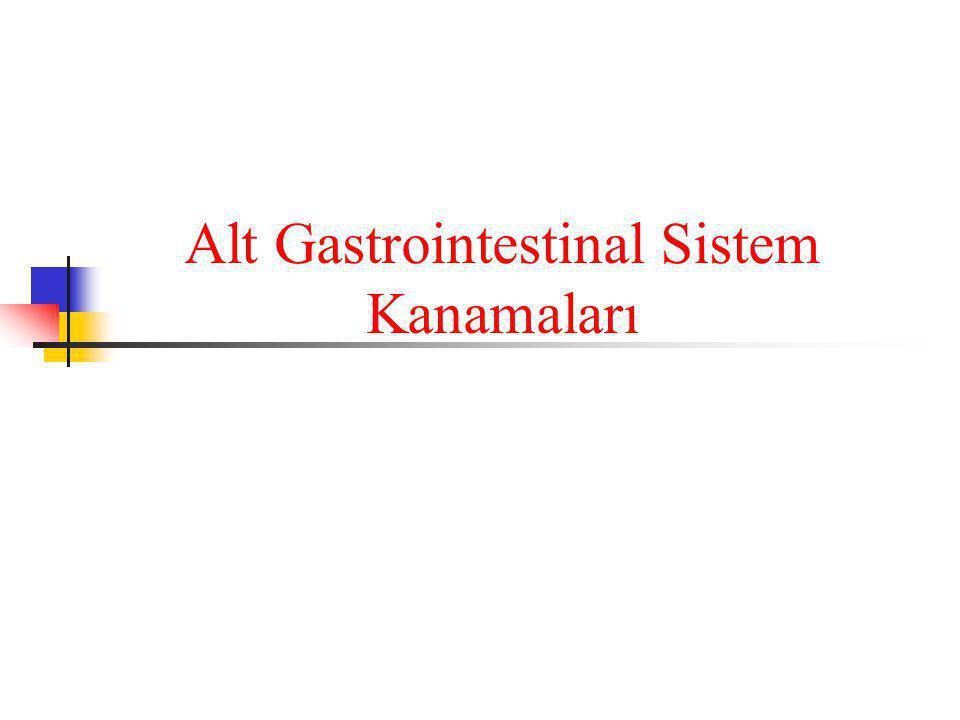 Alt Gastrointestinal Sistem Kanamaları
