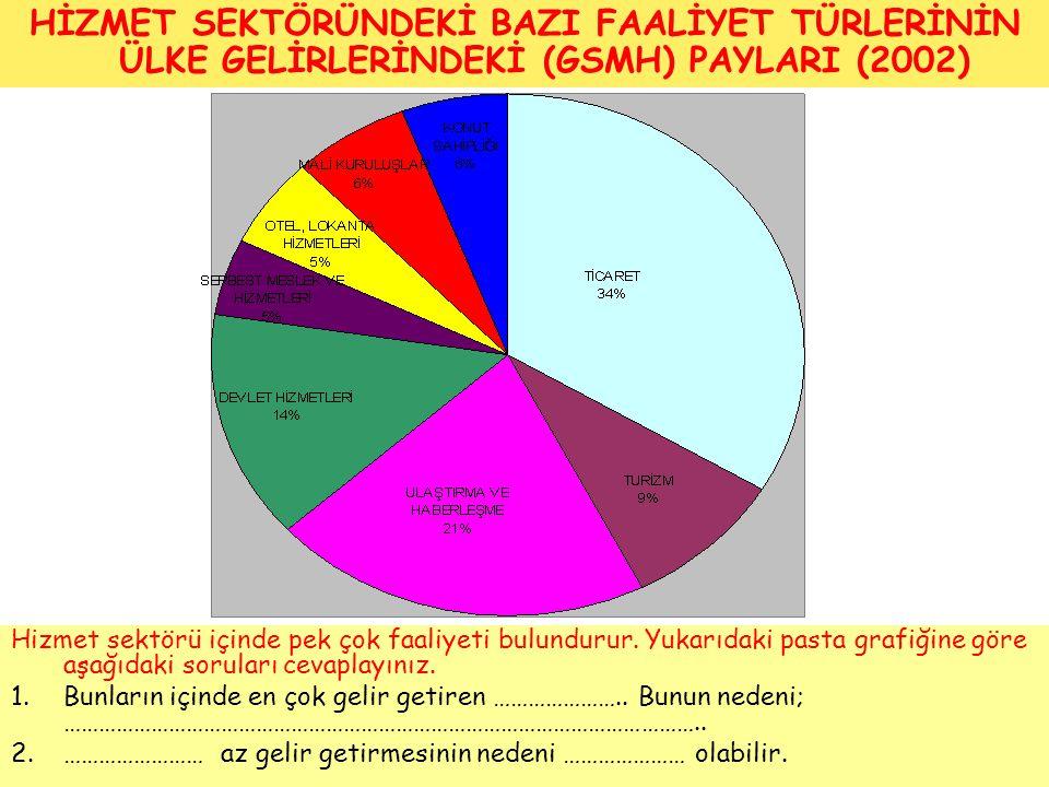 HİZMET SEKTÖRÜNDEKİ BAZI FAALİYET TÜRLERİNİN ÜLKE GELİRLERİNDEKİ (GSMH) PAYLARI (2002)