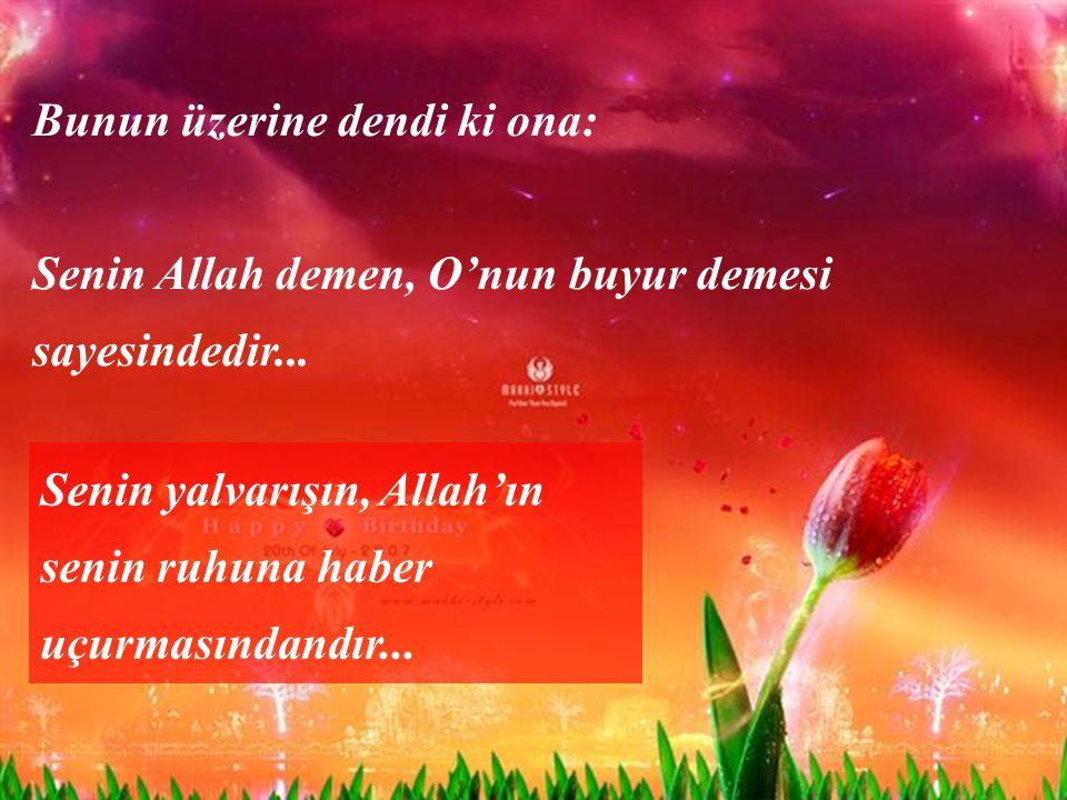 Bunun üzerine dendi ki ona: Senin Allah demen, O'nun buyur demesi sayesindedir...