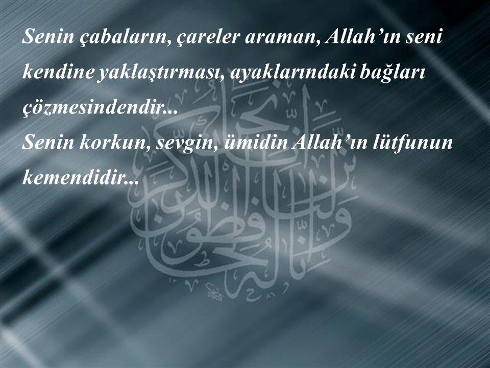 Senin çabaların, çareler araman, Allah'ın seni kendine yaklaştırması, ayaklarındaki bağları çözmesindendir...