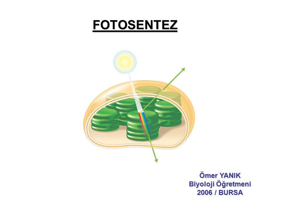 FOTOSENTEZ Ömer YANIK Biyoloji Öğretmeni 2006 / BURSA