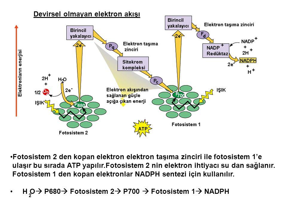 Devirsel olmayan elektron akışı