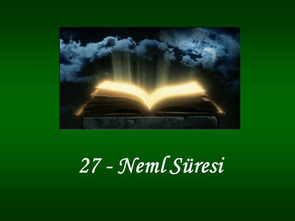 27 - Neml Süresi
