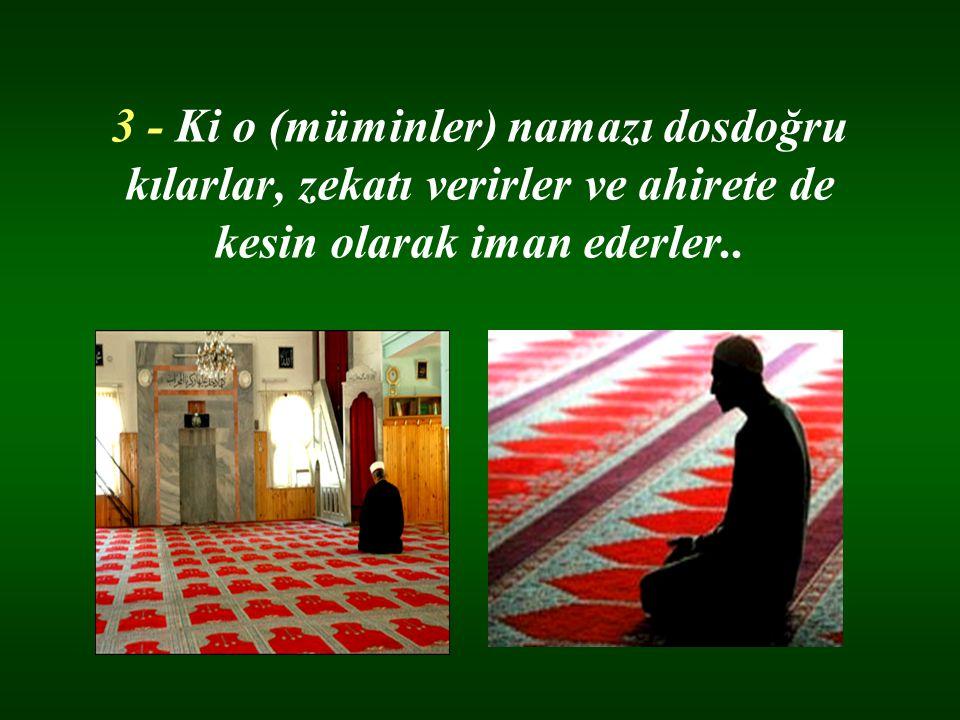 3 - Ki o (müminler) namazı dosdoğru kılarlar, zekatı verirler ve ahirete de kesin olarak iman ederler..