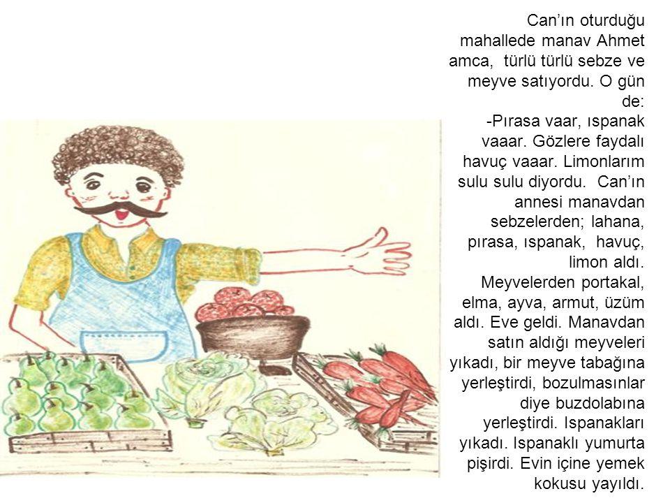 Can'ın oturduğu mahallede manav Ahmet amca, türlü türlü sebze ve meyve satıyordu.