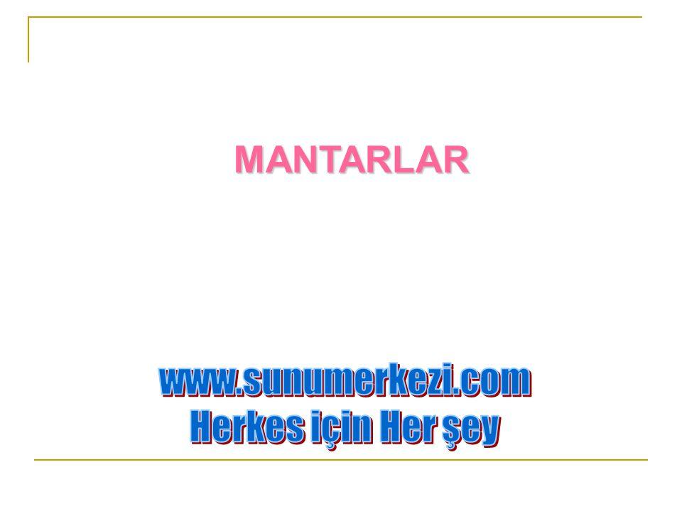 MANTARLAR www.sunumerkezi.com Herkes için Her şey