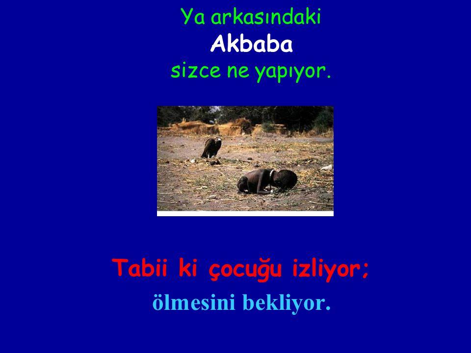 Ya arkasındaki Akbaba sizce ne yapıyor.