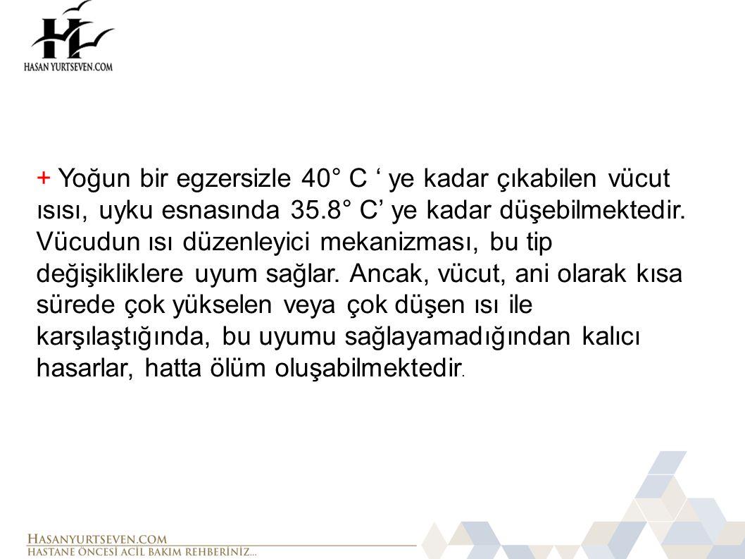 + Yoğun bir egzersizle 40° C ' ye kadar çıkabilen vücut ısısı, uyku esnasında 35.8° C' ye kadar düşebilmektedir.