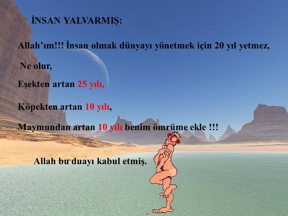 İNSAN YALVARMIŞ: Allah'ım!!! İnsan olmak dünyayı yönetmek için 20 yıl yetmez, Ne olur, Eşekten artan 25 yılı,