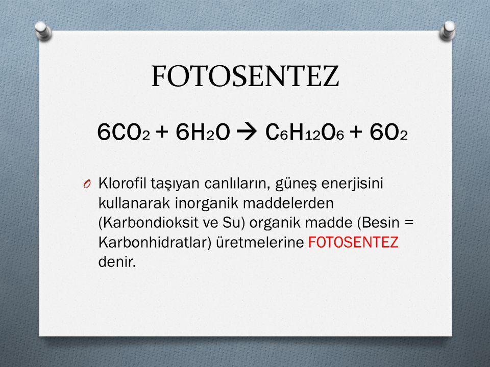 FOTOSENTEZ 6CO2 + 6H2O  C6H12O6 + 6O2