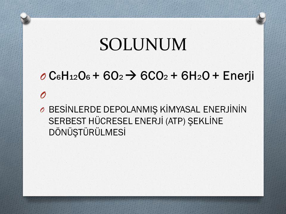 SOLUNUM C6H12O6 + 6O2  6CO2 + 6H2O + Enerji