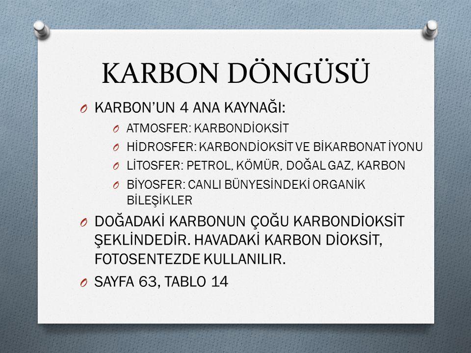 KARBON DÖNGÜSÜ KARBON'UN 4 ANA KAYNAĞI: