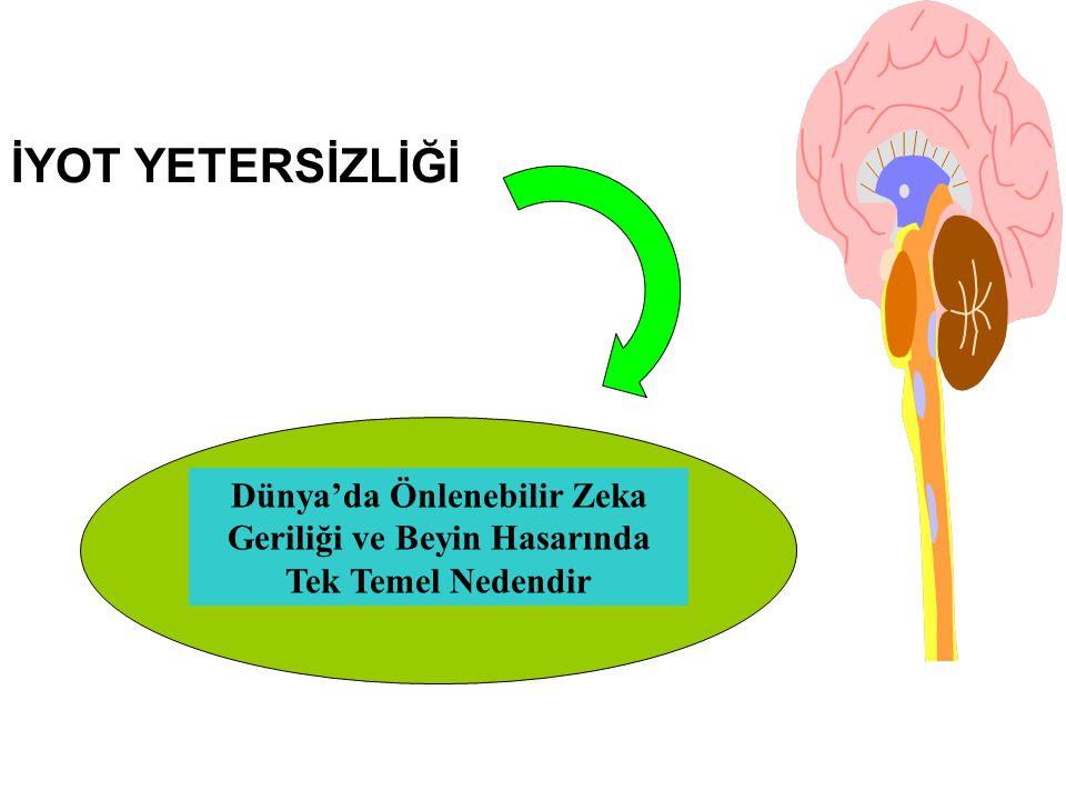 İYOT YETERSİZLİĞİ Dünya'da Önlenebilir Zeka Geriliği ve Beyin Hasarında Tek Temel Nedendir