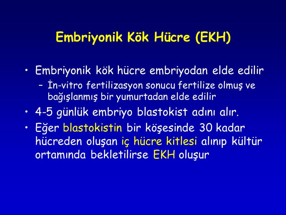 Embriyonik Kök Hücre (EKH)