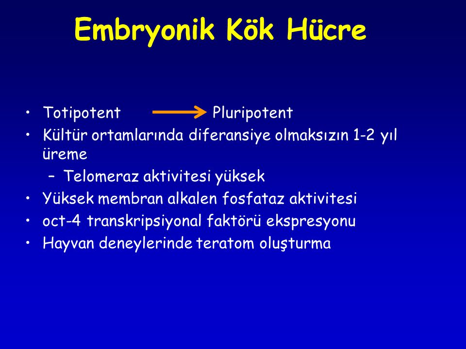 Embryonik Kök Hücre Totipotent Pluripotent