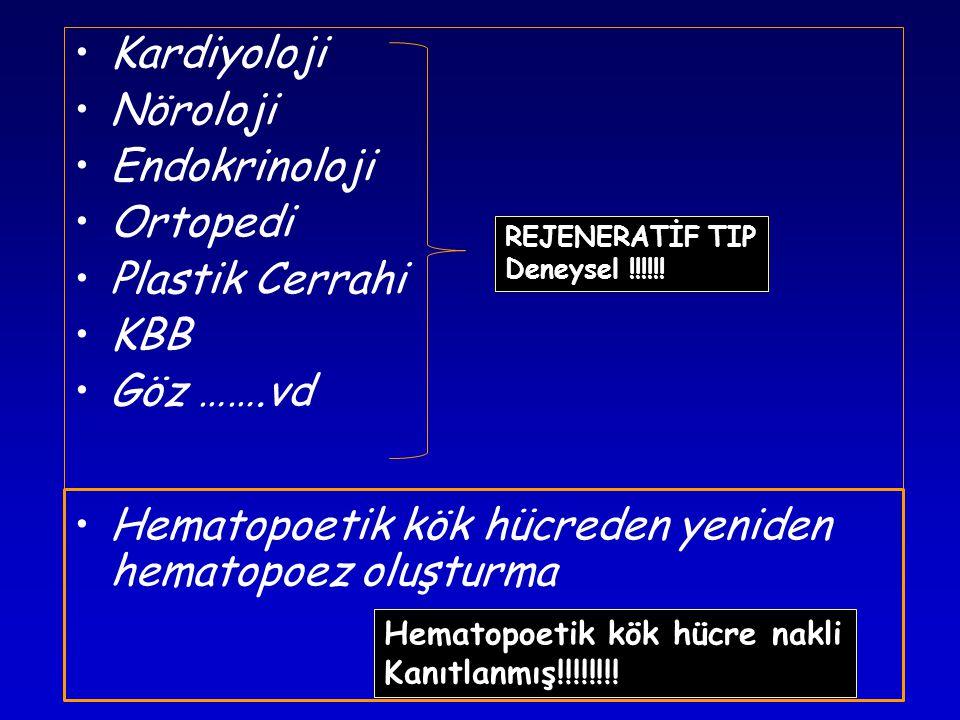 Hematopoetik kök hücreden yeniden hematopoez oluşturma