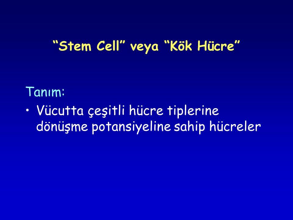 Stem Cell veya Kök Hücre