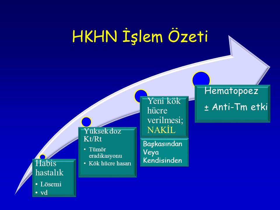 HKHN İşlem Özeti Yeni kök hücre verilmesi; NAKİL Hematopoez