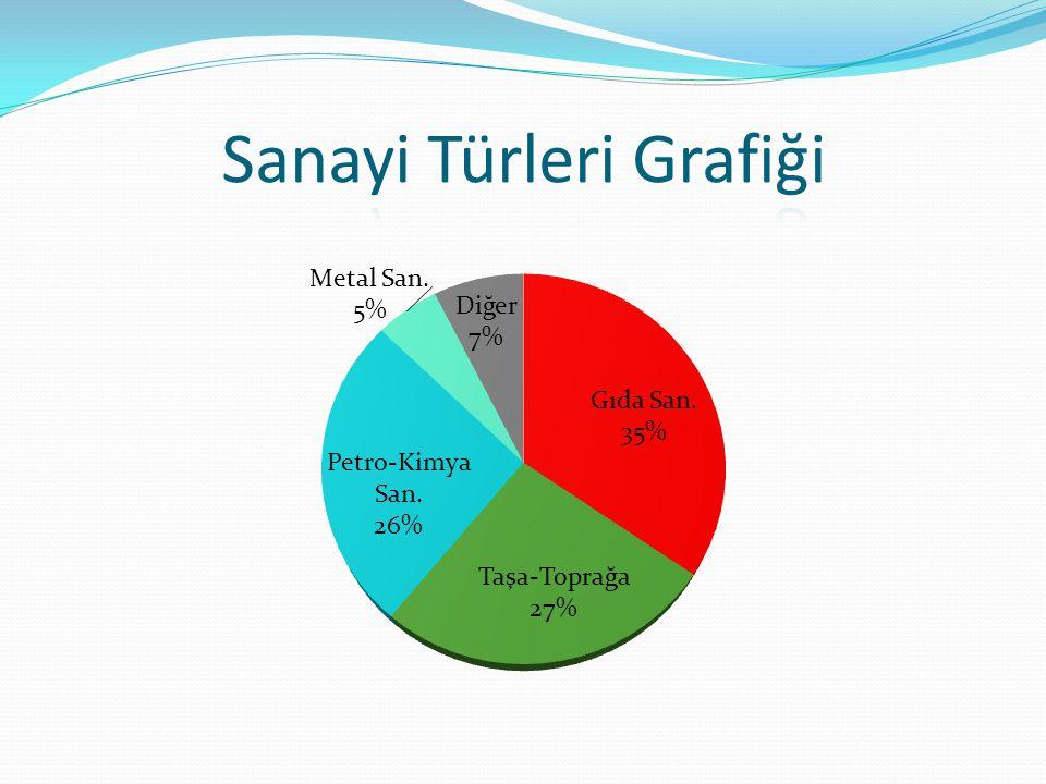 Sanayi Türleri Grafiği