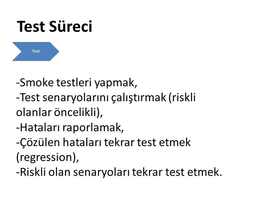 Test Süreci Smoke testleri yapmak,