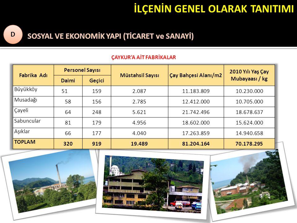 ÇAYKUR'A AİT FABRİKALAR 2010 Yılı Yaş Çay Mubayaası / kg