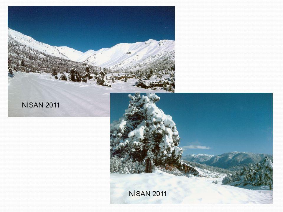 NİSAN 2011 NİSAN 2011