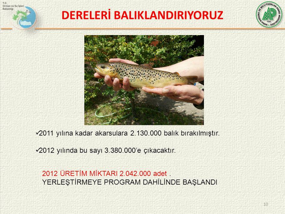 DERELERİ BALIKLANDIRIYORUZ