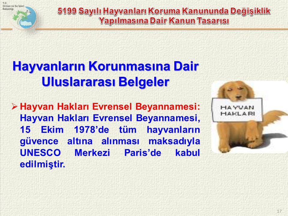 Hayvanların Korunmasına Dair Uluslararası Belgeler