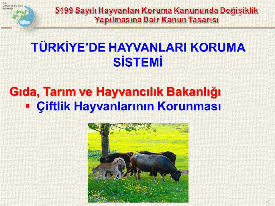 TÜRKİYE'DE HAYVANLARI KORUMA SİSTEMİ