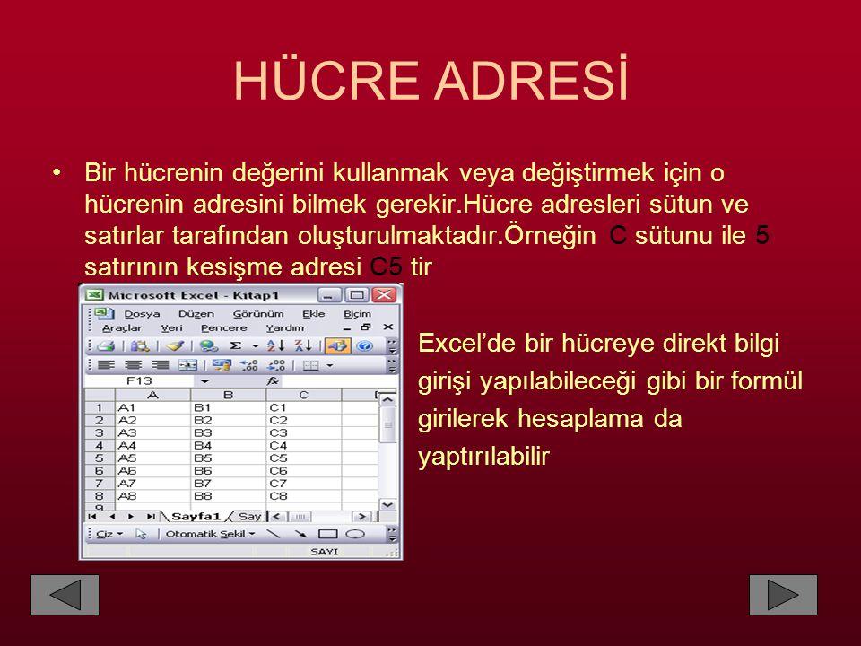 HÜCRE ADRESİ