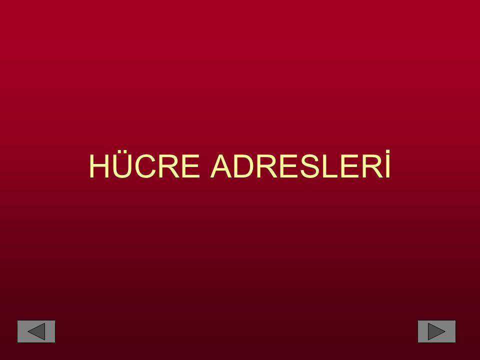 HÜCRE ADRESLERİ