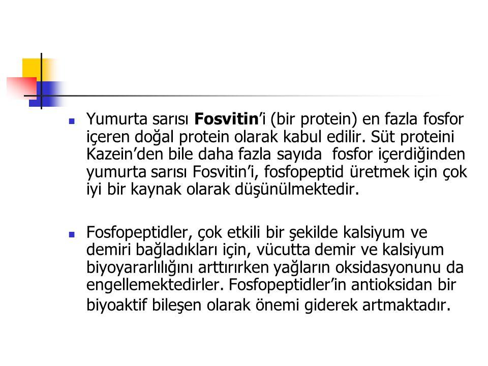 Yumurta sarısı Fosvitin'i (bir protein) en fazla fosfor içeren doğal protein olarak kabul edilir. Süt proteini Kazein'den bile daha fazla sayıda fosfor içerdiğinden yumurta sarısı Fosvitin'i, fosfopeptid üretmek için çok iyi bir kaynak olarak düşünülmektedir.