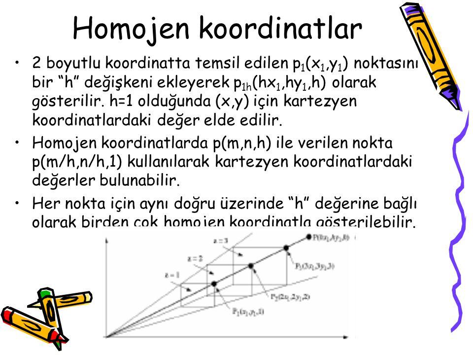 Homojen koordinatlar