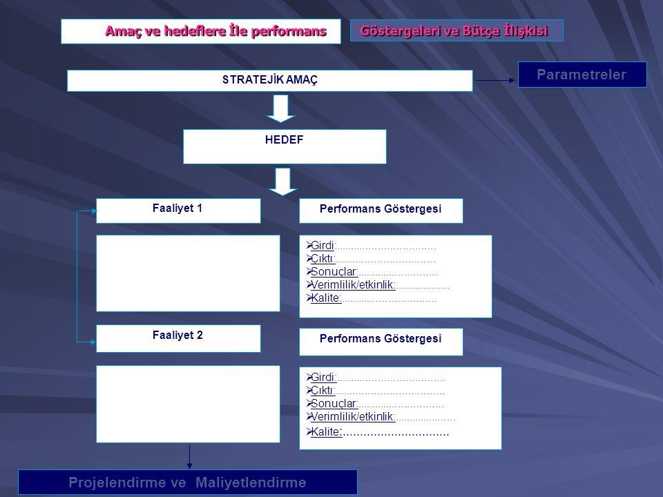 Performans Göstergesi Projelendirme ve Maliyetlendirme