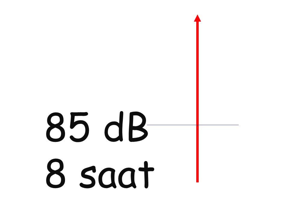 85 dB 8 saat