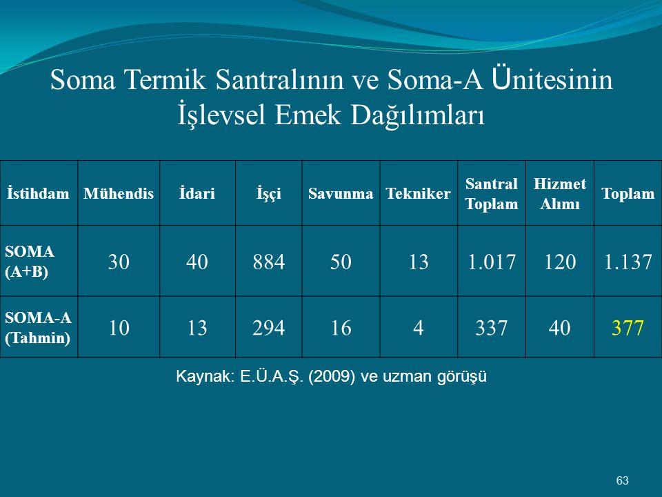 Soma Termik Santralının ve Soma-A Ünitesinin İşlevsel Emek Dağılımları
