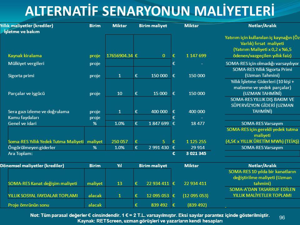 ALTERNATİF SENARYONUN MALİYETLERİ