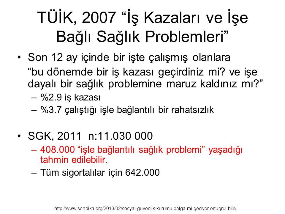 TÜİK, 2007 İş Kazaları ve İşe Bağlı Sağlık Problemleri