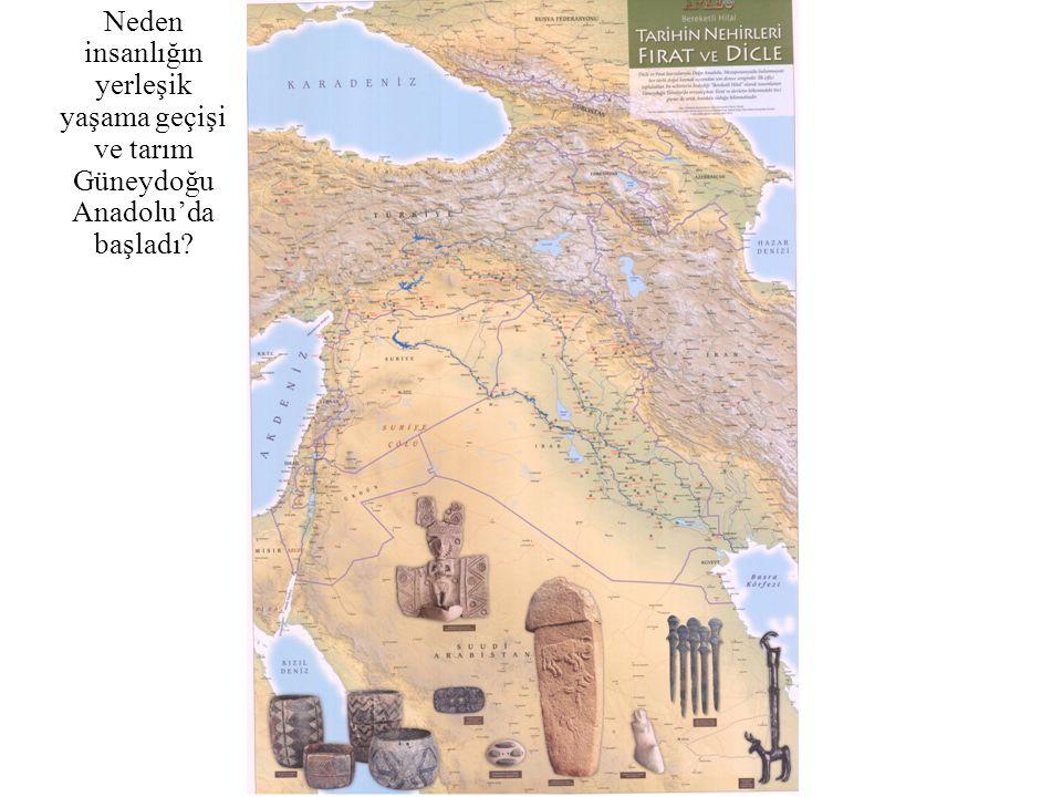 Neden insanlığın yerleşik yaşama geçişi ve tarım Güneydoğu Anadolu'da başladı